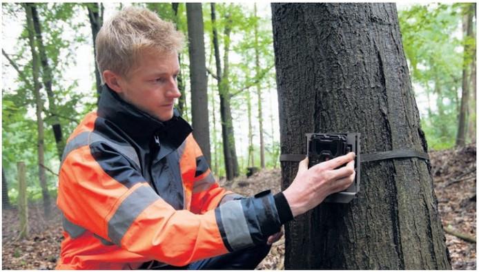 Mark van Heukelum plaatst een wildcamera.