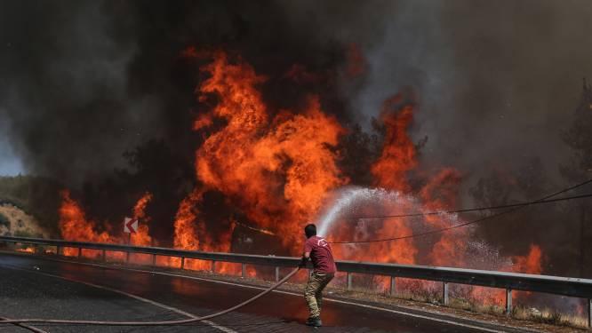 Bijna alle bosbranden in Turkije onder controle, ellende in Bodrum en Marmaris nog niet voorbij