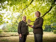 Natuurmonumenten zoekt geld voor bomenpark Arboretum in De Lutte: 'We willen verleden bewaren voor de toekomst'