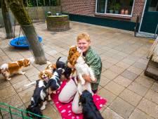 Raad van State: 'Hondenfok in Noordijk is geen veehouderij'