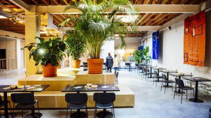 De Roma opent volgende week nieuw restaurant AMOR
