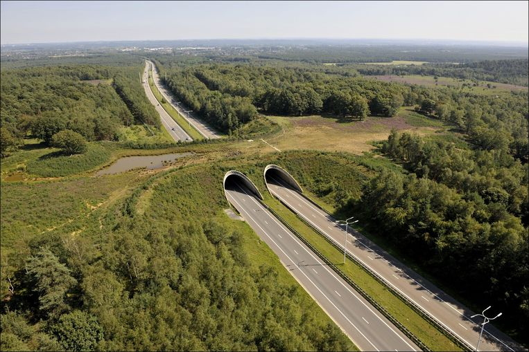 Ecoduct Kikbeek.