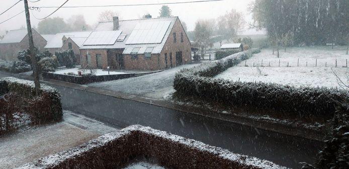 Sneeuw in Hélécine in Waals-Brabant.