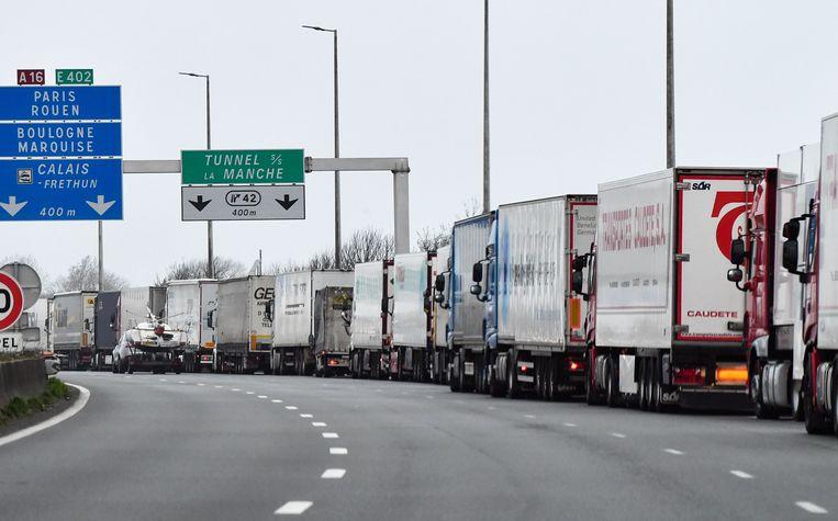 Een rij vrachtwagens in de buurt van Calais. (archiefbeeld) Beeld AFP