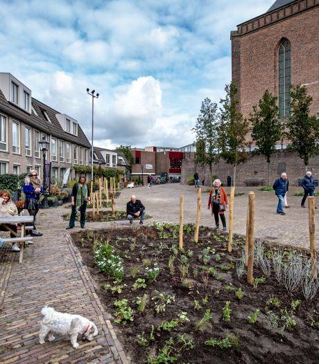 Het versteende pleintje achter de Stevenskerk heeft nu tuintjes: 'Maar nu moet het hele plein groen!'