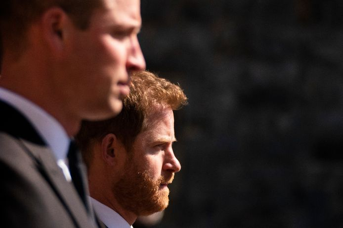 Prinsen William en Harry.