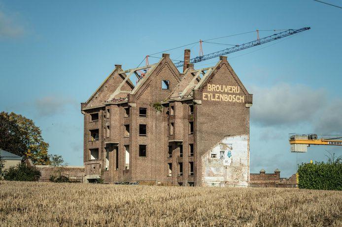 De renovatie van de Eylenbosch-site schiet alvast goed op.