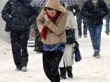 Le froid a tué 540 personnes en Europe, dont trois en Belgique