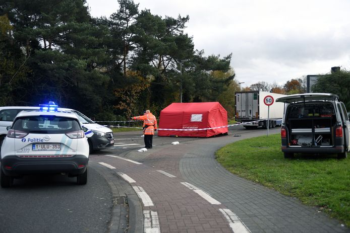 De fietsster kwam om in Rotselaar.