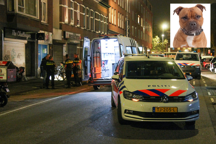 Politie, ambulance en dierenambulance kwamen ter plaatse.