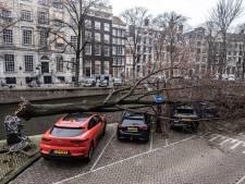Omgewaaide bomen door storm Evert zorgen voor flinke schade