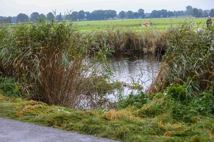 De rietkraag is de stille getuige van de crash die een auto maakte met het Apeldoornse Kanaal in Vaassen.
