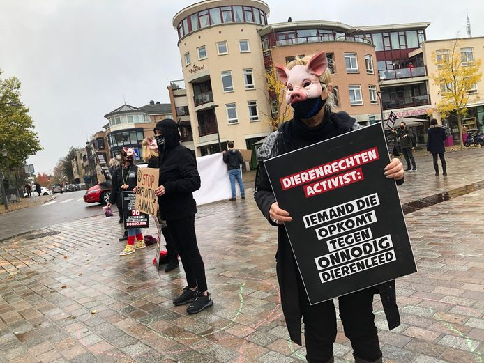 Volgens de actievoerder laat de Veghelse varkenswinkel niet het leed zien dat de varkens wordt aangedaan.