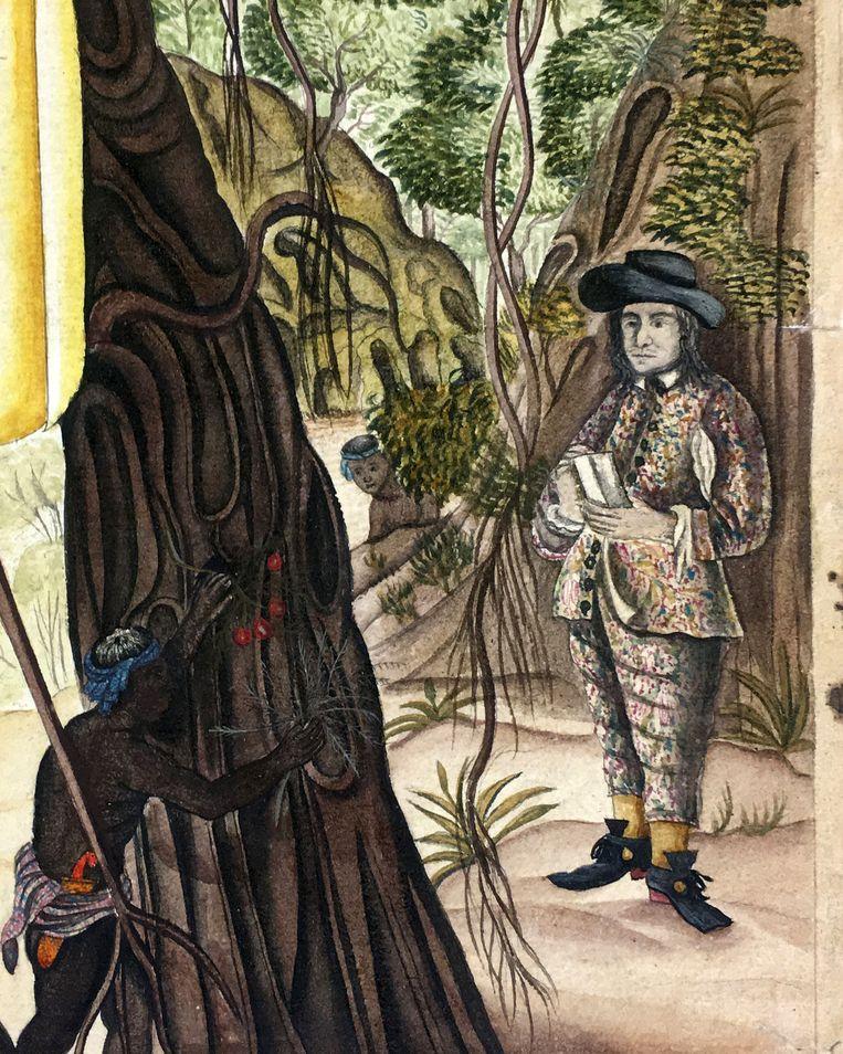 Rumphius op expeditie met opschrijfboekje in de hand, detail van de titelprent van het Auctuarium. Beeld Bijzondere Collecties, Universitaire Bibliotheken Leiden