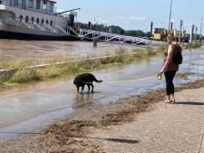 Kade Tolkamer vol rotzooi na hoogwater: wie gaat dit opruimen?