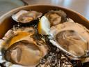 De vlezige platte oesters.