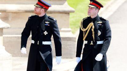 Broers Harry en William gaan hofhouding opsplitsen
