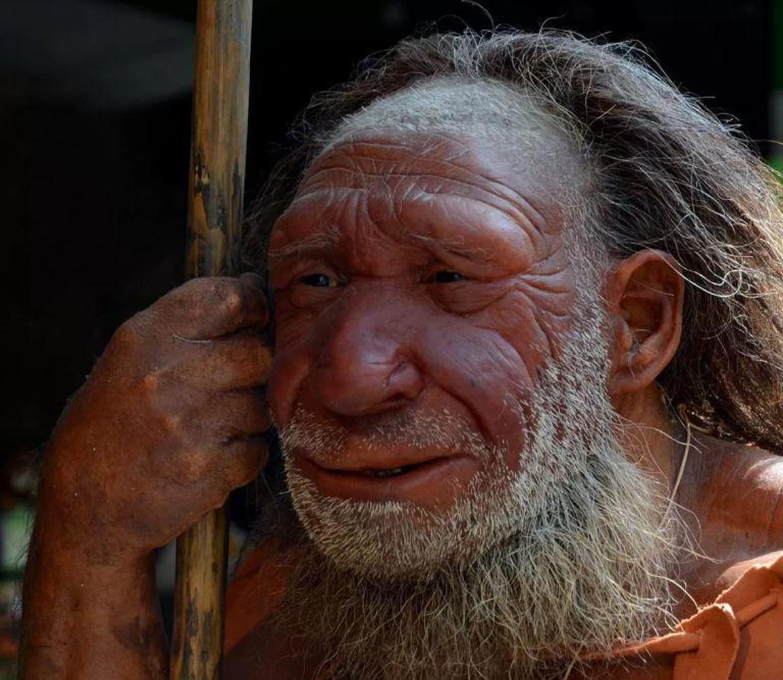 Een reconstructie van een neanderthaler.