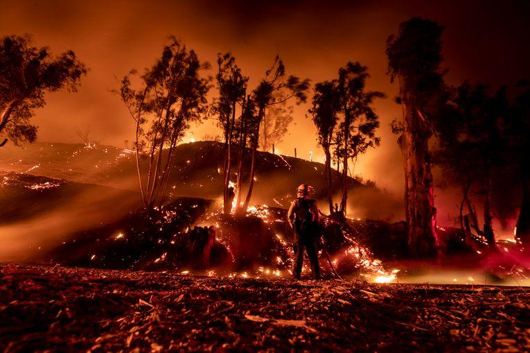 Arcadis werkt in de VS aan plannen voor de herinrichting van gebieden die door grote branden zijn verwoest. Beeld EPA
