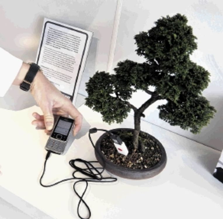 Een bio-elektrische bonsai kan een mobieltje opladen. (FOTO ANP) Beeld