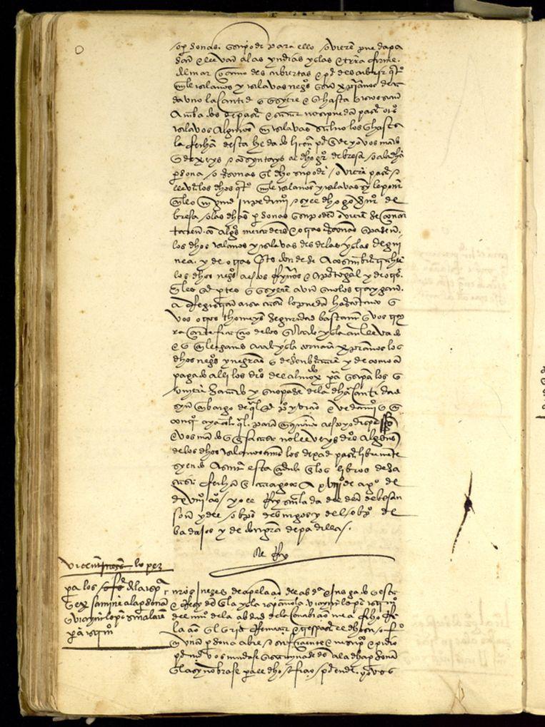 Het charter waarmee Keizer Karel V aan Laurent de Gouvenot toestemming gaf 4.000 slaven te verschepen van Afrika naar Amerika. Beeld Archivo General de Indias, Sevilla