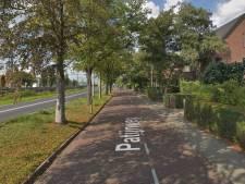 Boom wijkt om van Patijnweg in Goes een fietsstraat te kunnen maken