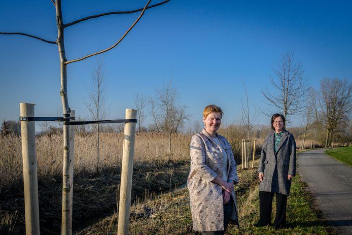 Schepenen Lien Verwaeren en Leen Dierick bij de nieuwe notenbomen, nu nog omringd door houten palen om ze mooi recht te laten groeien.