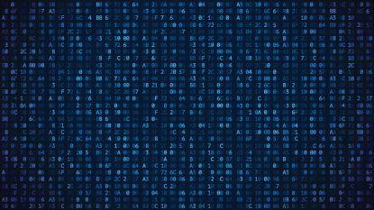 Bibliotheekwebsite geplaagd door technische storingen