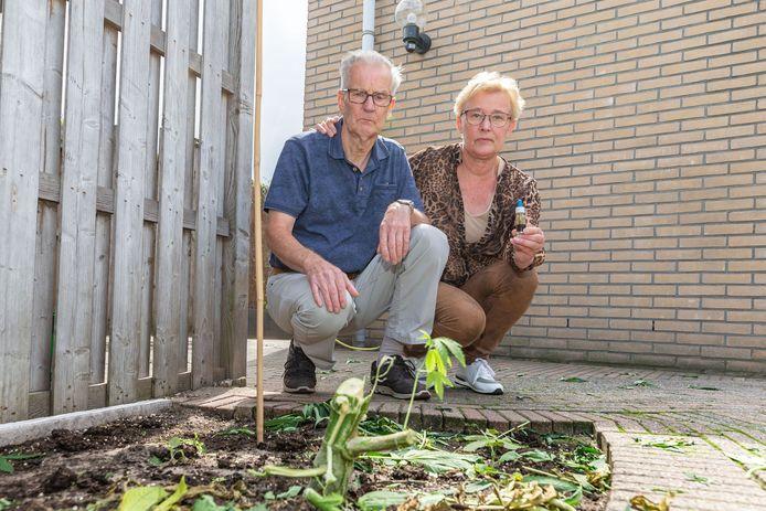 Jan en Jannie van Raalte zonder wietplanten in hun tuin. De politie haalde ze in september weg.