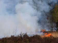 Heidebrand in natuurgebied Schijf onder controle: ontstaan door Defensie-oefening