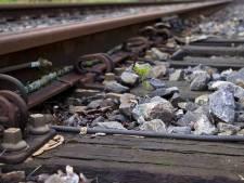 Hitteschouw moet treinstoring voorkomen