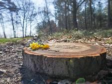 'Onderzoek mogelijkheden voor natuurbegraafplaats in Hardinxveld'