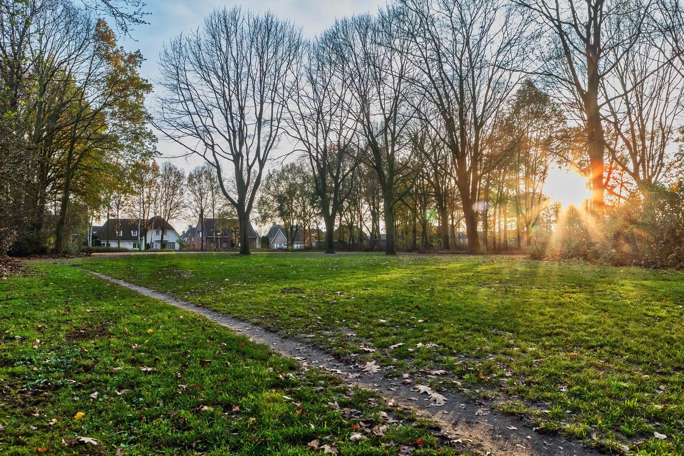 Op dit veldje in de oksel van het Ruiterpad en het Spoorpad in Baarle-Nassau zou een ontmoetingsplek voor honden moeten komen.