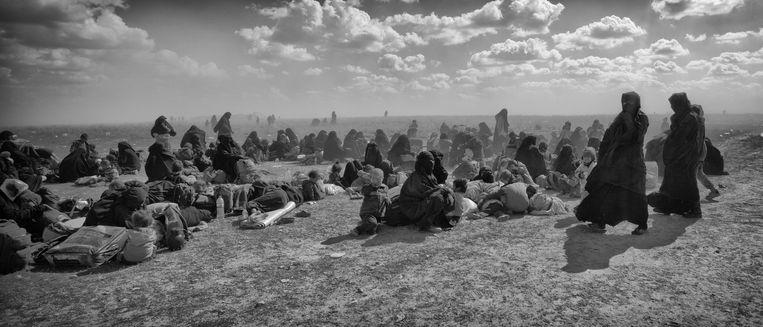 Duizenden gevluchte IS families verzamelen zich in het woestijn gebied ten noorden van Baghuz, zij wachten op transport naar een van de IS kampen, in het noordelijke deel van Syrie, en toch van vele uren, veelal in vrachtwagens geschikt voor vee. Beeld Eddy van Wessel