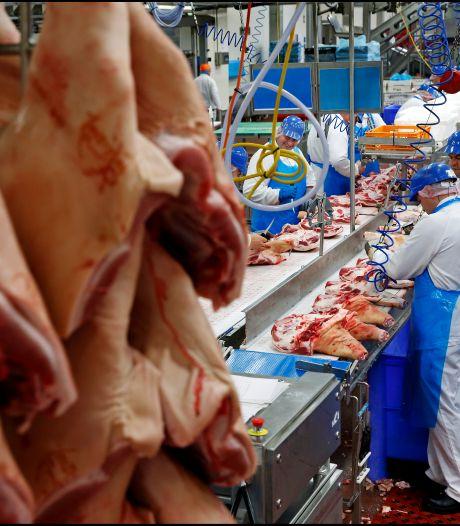Angstcultuur in vleessector: slachterijwerkers zwijgen opgelegd