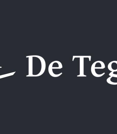 AD won een Tegel, maar wat is dat eigenlijk?