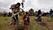 Vilvoorde moet tegen de lente 16.000 bomen rijker zijn