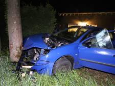 Automobilist rijdt in voortuin van woning Geldermalsen en gaat op de vlucht met ander voertuig