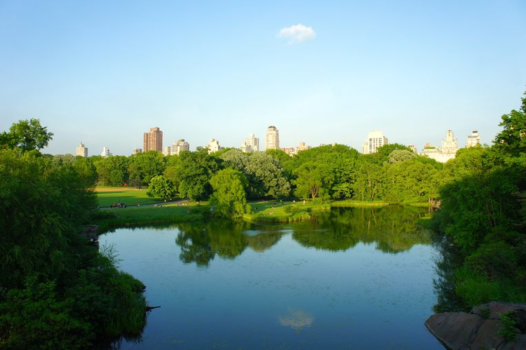 The Lake in Central Park.  Beeld Thibaut Renard