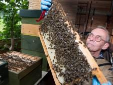 Een kolonie bijen gesignaleerd? Dan krijgt imker Harry een melding in de zwerm-app