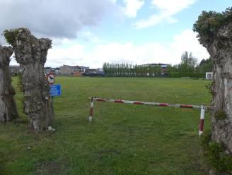 Site Ter Wilgen krijgt deze zomer volleybalvelden
