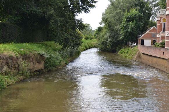 De kwaliteit van het water van de Demer gaat in stijgende lijn, maar er is nog werk aan de winkel.