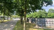'Zomerfilms' start op... kerkhof