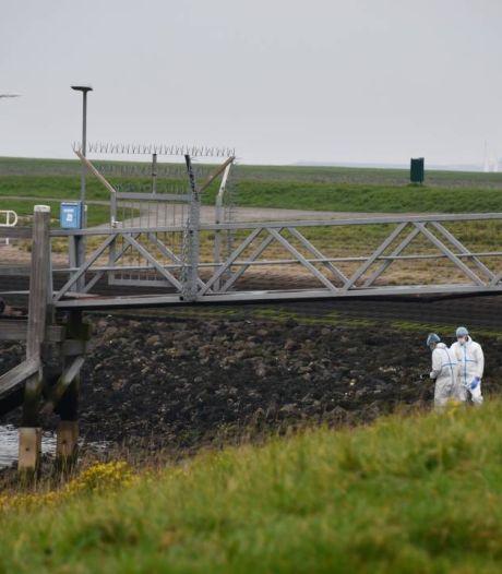 Politie weet na twee dagen nog niet wie de dode man is bij Oesterdam in Tholen, waarschijnlijk sprake van misdrijf
