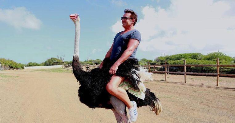 Gerard Joling rijdt op een struisvogel.