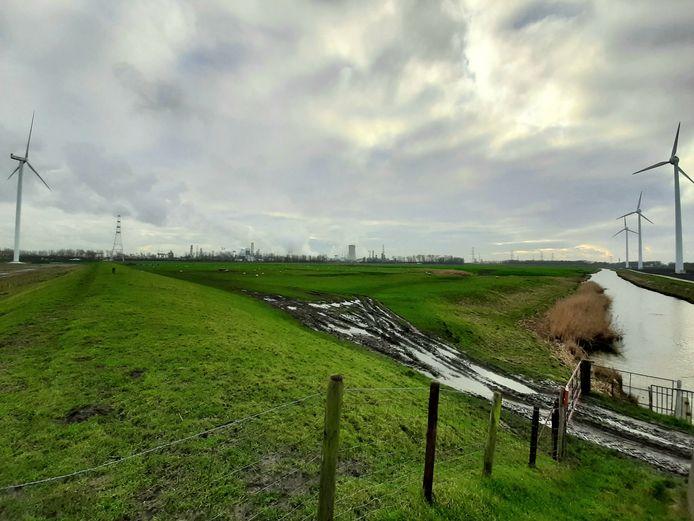 Het nieuw te bouwen Windpark ZE-BRA strekt zich uit van de molens bij de Kabeljauwbeek in Ossendrecht (links) tot Rilland. De vijf voorziene windturbines op Woensdrechtse bodem leiden tot verzet bij inwoners, natuurclubs en politiek.