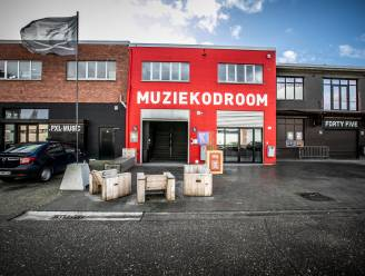 Hasselt en Genk pompen 2,3 miljoen euro in steun voor kunstenorganisaties