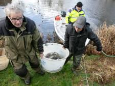 Sportvissers onderzoeken visstand in vijver in Hardenberg