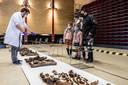 Sinds dit weekend kunnen de inwoners in Berlare en daarbuiten een grote collectie van beenderen bezoeken in het CC Stroming in Berlare.