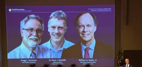 Nobelprijs Geneeskunde voor onderzoek naar gedrag lichaam bij zuurstoftekort
